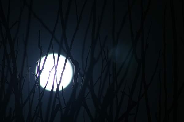 Split Moonlight