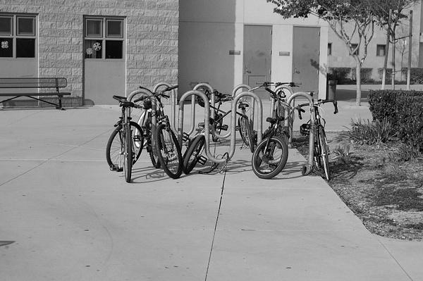 Swag Bikes by Jamie42