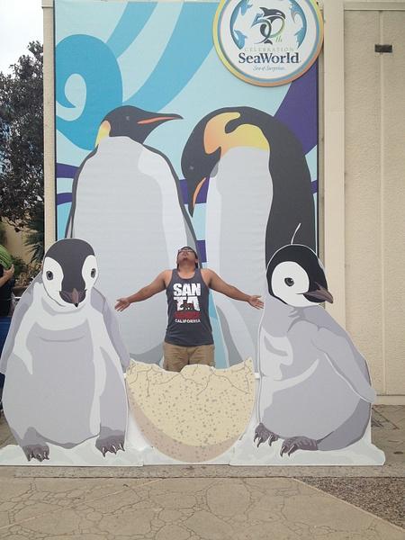 Seaworld Penguin Army by RyanAvelino