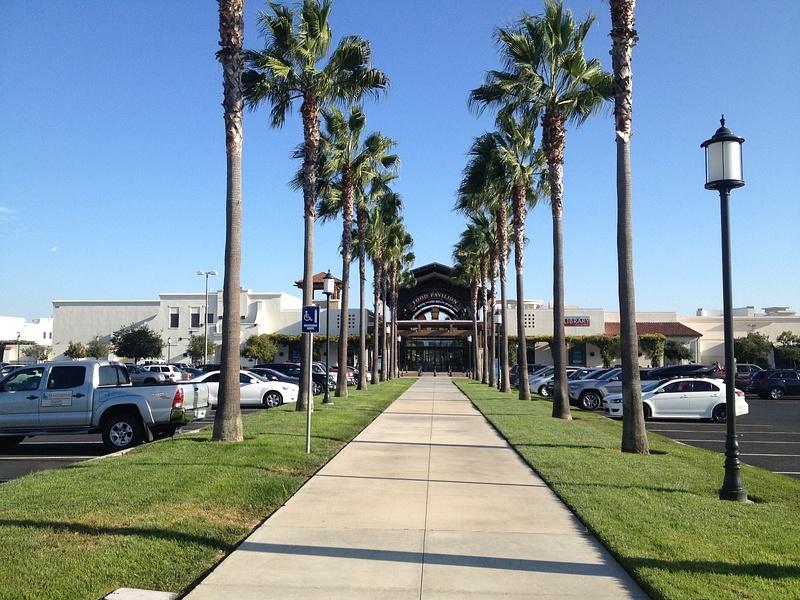 Palm Tree Entrance