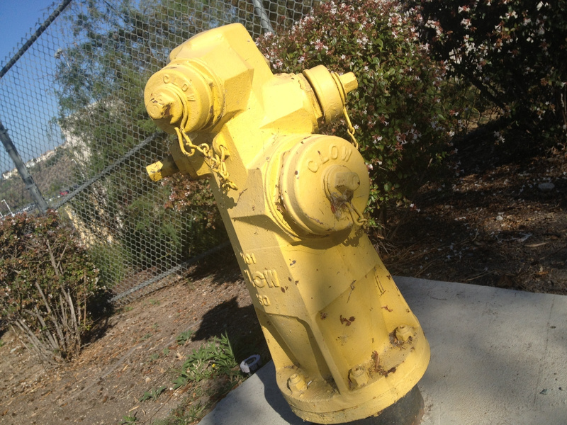 School Fire Hydrant
