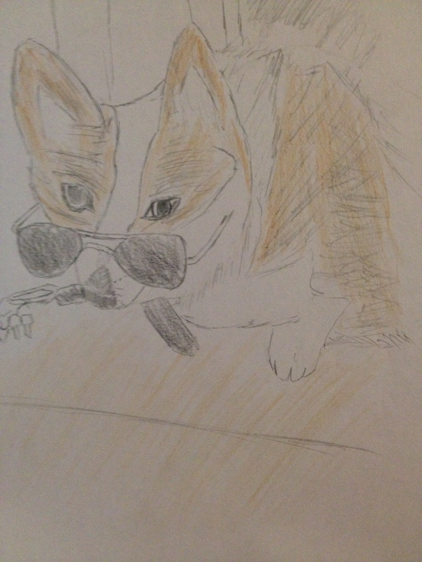 Drawing of the Dog
