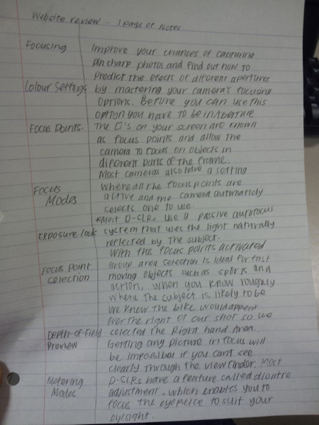 Website review...1 page of notes by AngelicaSandovalp5