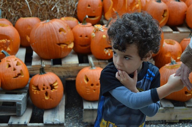 Pumpkin Carve 3