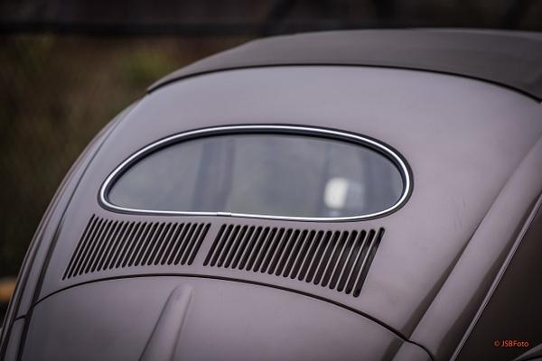 Bugs! by Jsbfoto