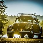 '56 Beetle