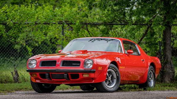 Texas Trans Am by Jsbfoto