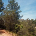 2015 05 10_Coves de San Ferrerrìs