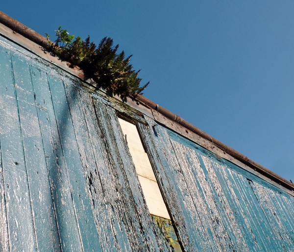 green on blue by Henner Stollberg