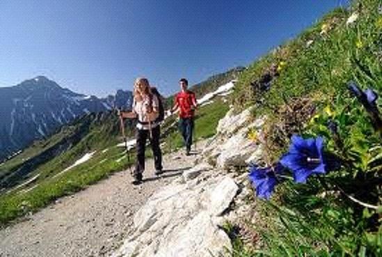 Tagesausflug Schweiz blog
