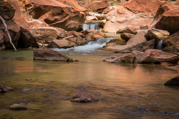 Zion National Park by CathyDonohoue
