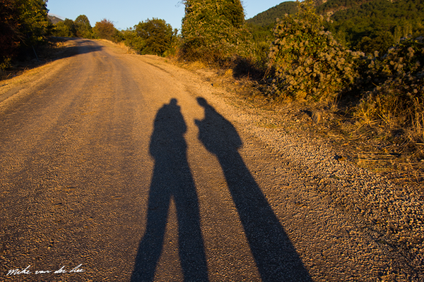 Silhouettes by sundown