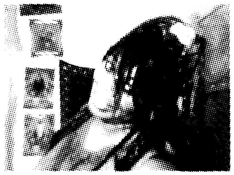 webcam-toy-photo738