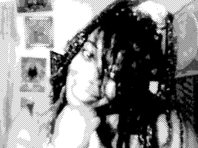webcam-toy-photo774