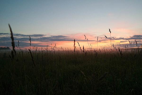 SAM_0244 by PhotoSwift