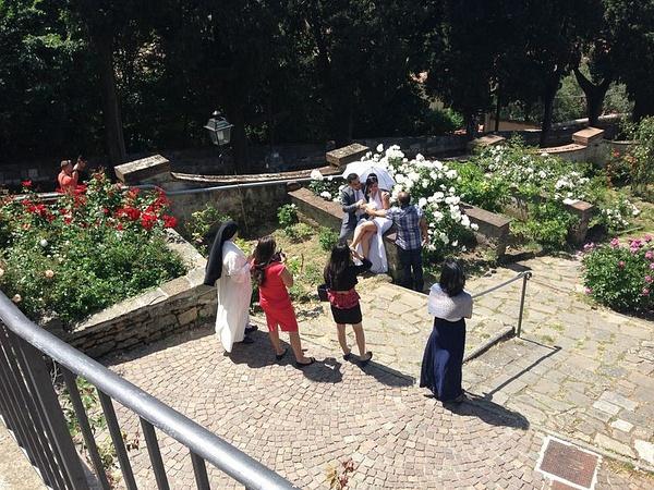 The gardens below Piazzale Michelangelo by BradAndDebbie