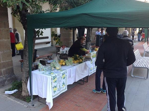 The lemon festival by BradAndDebbie