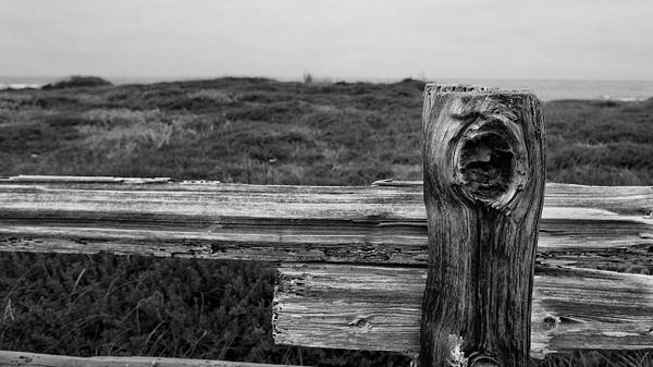 Monterey Bay by VinceSarubbi