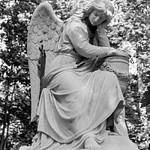 Ангелы Введенского кл.