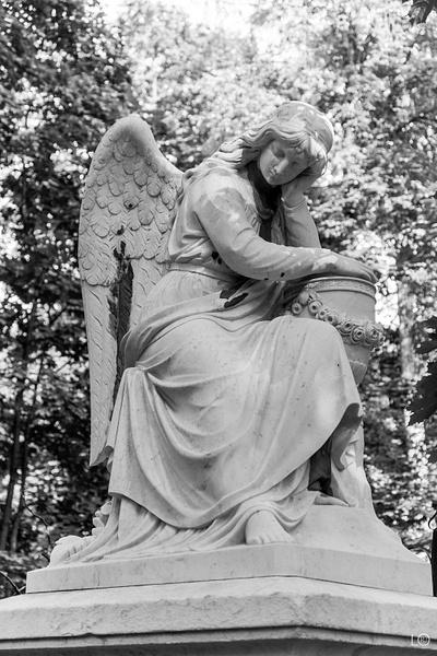 Ангелы Введенского кл. by...