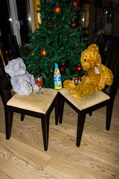IMG_1854 by Barmaley2