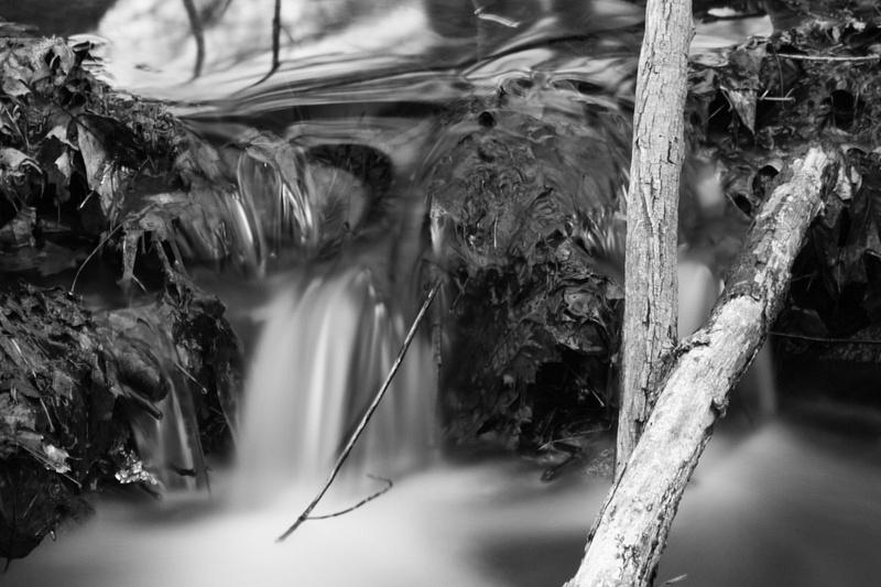 a tiny creek