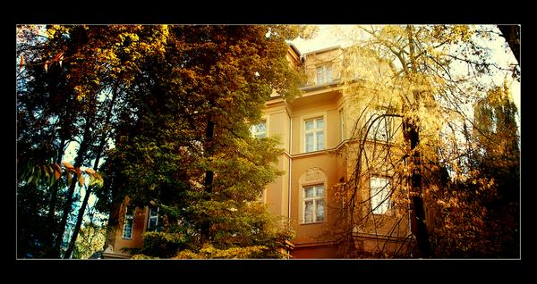 autumn2008_up by Quangjacki26