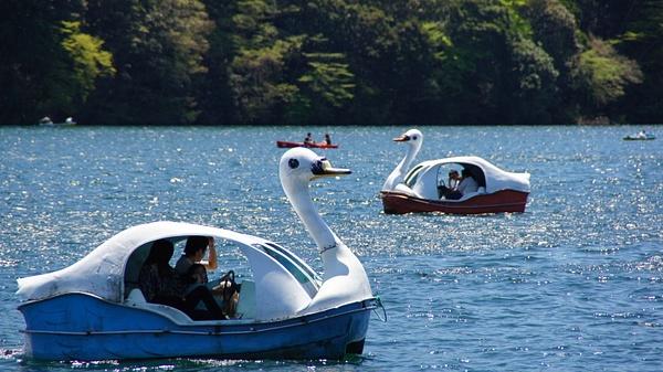 Enjoying the lake - Hakone by luis0093
