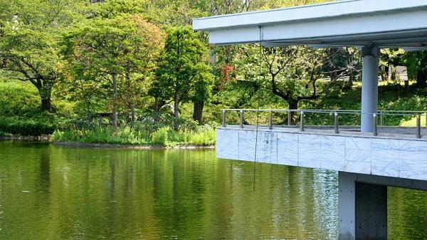 Morning park - Tsukuba by luis0093