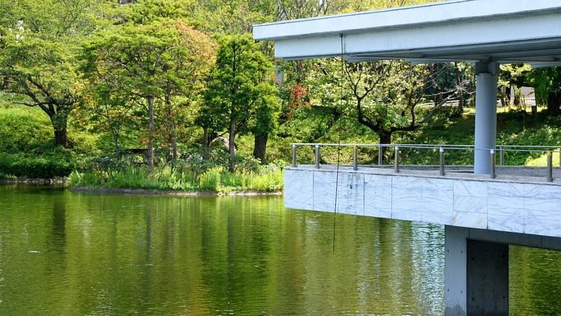 Morning park - Tsukuba