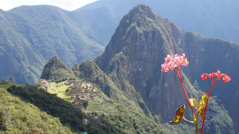 View from the Inca road, Cuzco - Perú