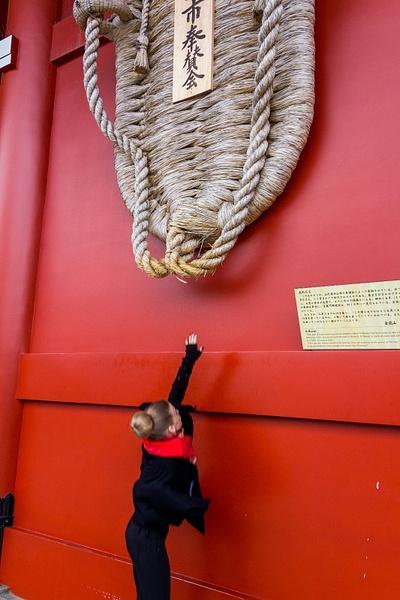 Japan2014-30 by DmitryKarmanov