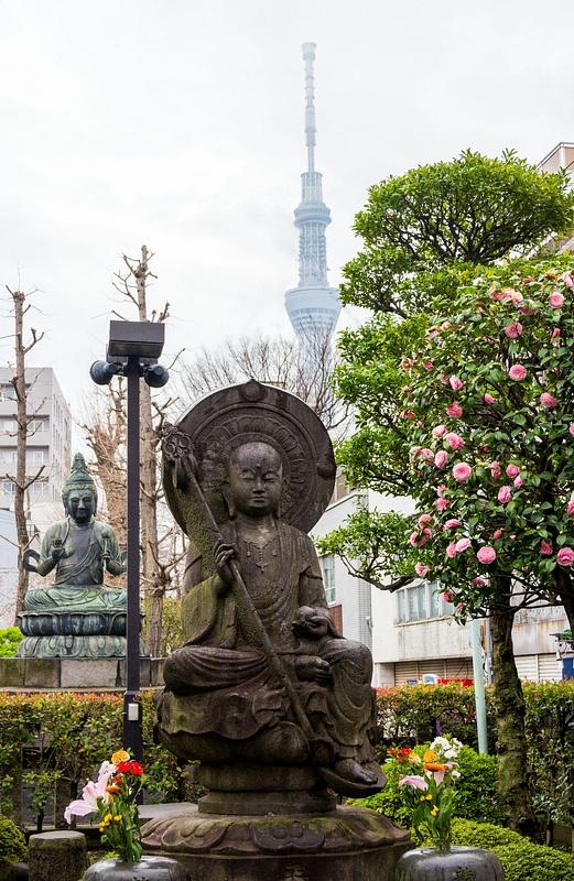 Japan2014-21