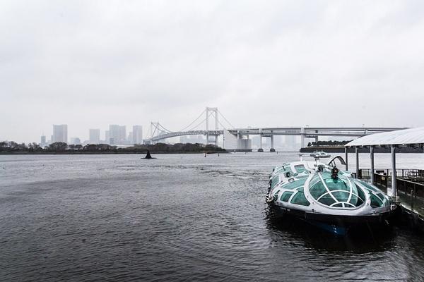 Japan2014-79 by DmitryKarmanov