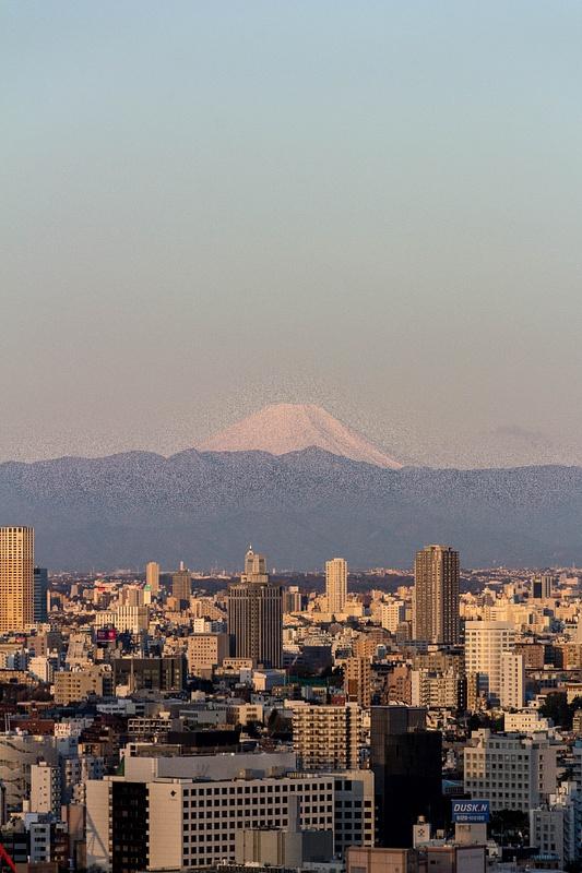 Japan2014-153