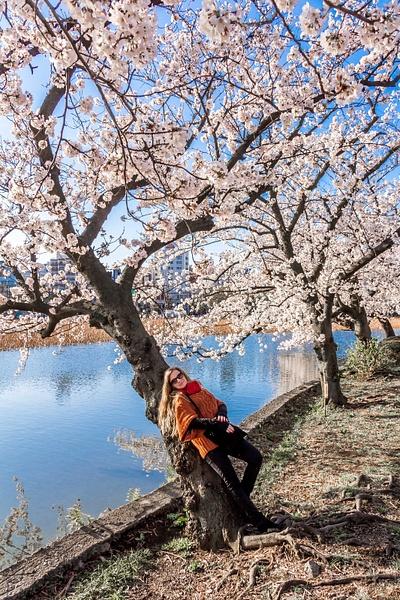 Japan2014-173 by DmitryKarmanov