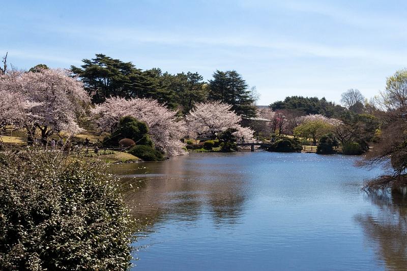 Japan2014-240
