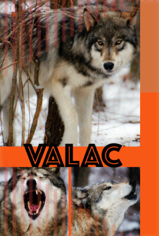 VALAC COLLAGE attempt 1