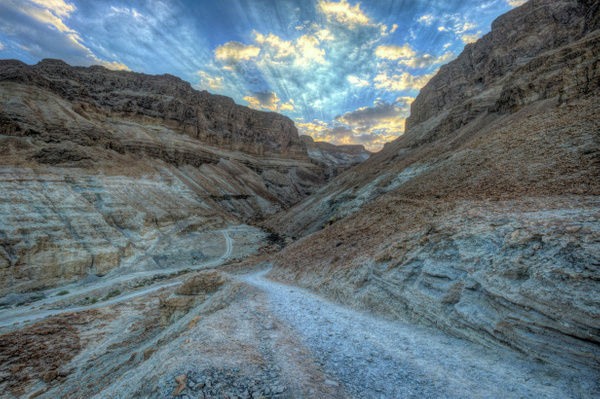 Ancient Path to Masada by Aurelia