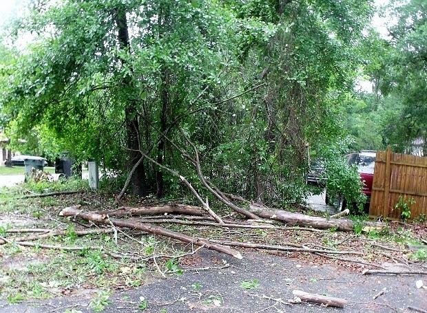 Storm damage 4-20-15 a