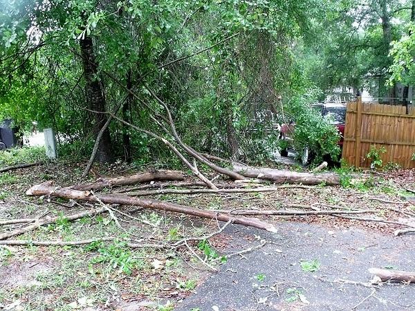 Storm damage 4-20-15 b by pikachukiser