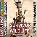 Survivor 30 Wooden Idol Allysense by pikachukiser