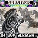 Survivor31_Florimel_pool_avatar by pikachukiser