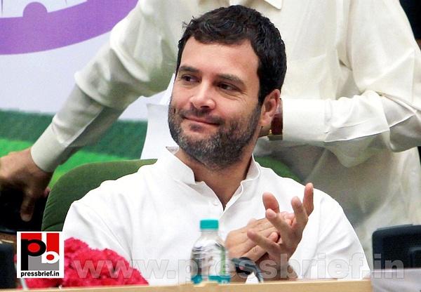 Rahul Gandhi addresses Dalit meet in Delhi (2) by...