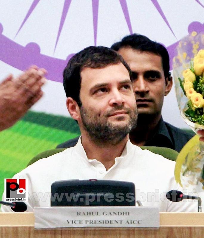 Rahul Gandhi addresses Dalit meet in Delhi (3)