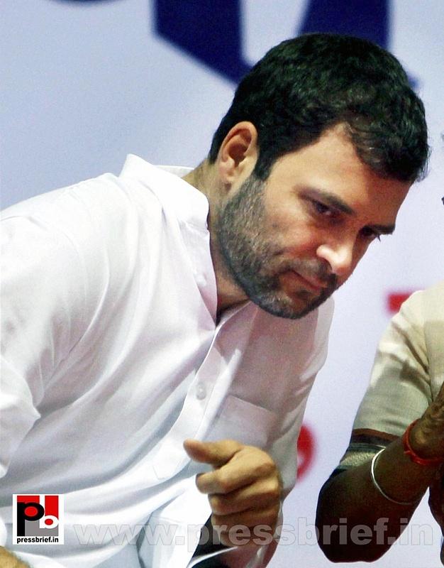 Rahul Gandhi addresses Dalit meet in Delhi (5)