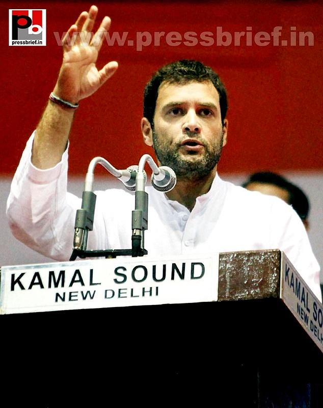 Rahul Gandhi addresses Dalit meet in Delhi (8)