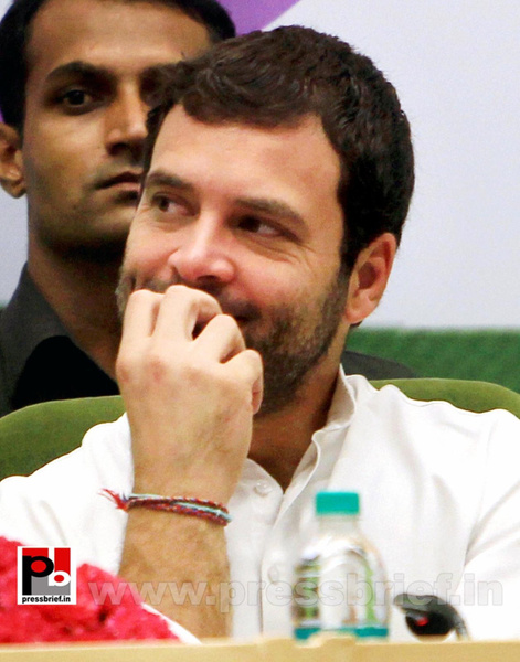 Rahul Gandhi addresses Dalit meet in Delhi by Pressbrief...