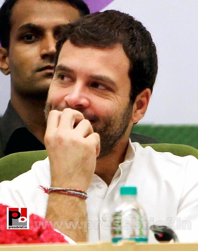 Rahul Gandhi addresses Dalit meet in Delhi (9)