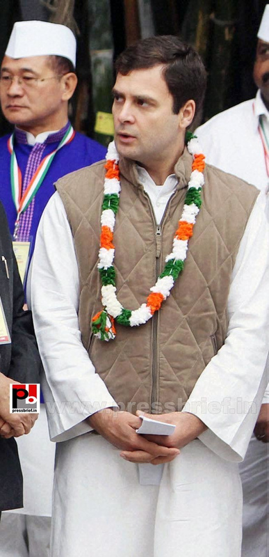 Rahul Gandhi at AICC session in New Delhi (12)